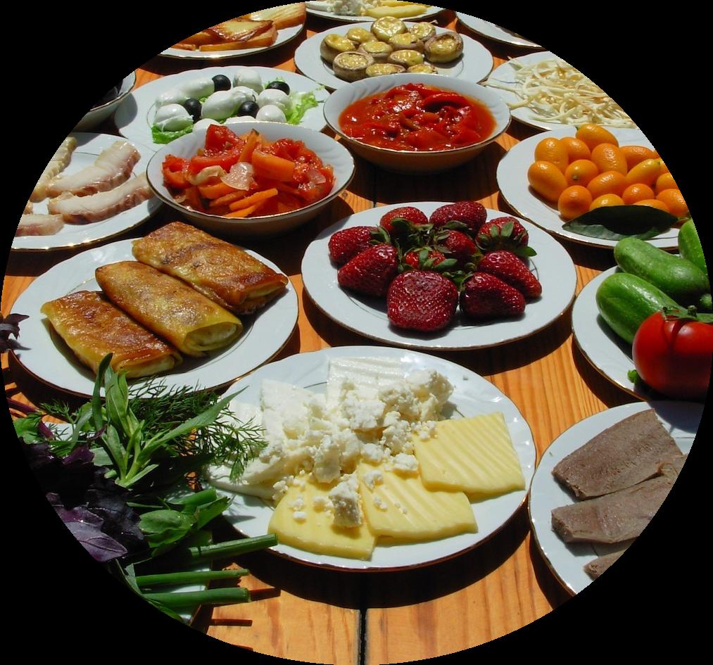 hospitaly mediterranean metabolic wellness